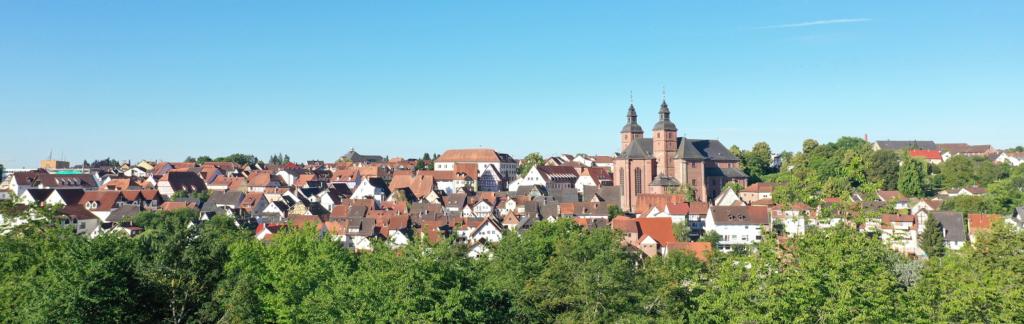 Stadt Walldürn Panorama